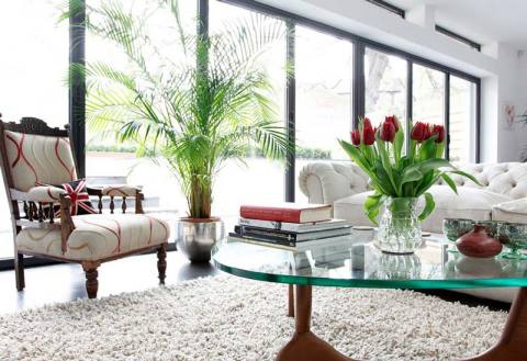 How to decorate your green home