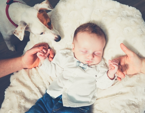 How to prepare your dog for welcoming your baby