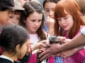 Reptile shows in schools - benefits for your children